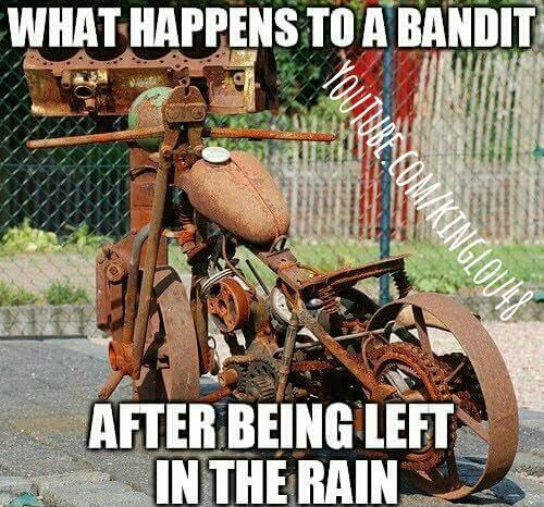 Kinglou48 On Twitter Who Agrees Meme Suzuki Bandit Motovlog