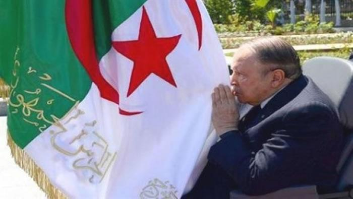 Happy independence day Algeria   #5Juillet #5thOfJuly62 #Algeria #DZ #53years<br>http://pic.twitter.com/HLm9zzJmJg