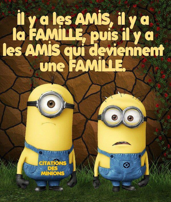 Citation Des Minions On Twitter Minions