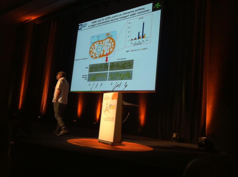 #ICAR2015 Wolfgang Droge-Lazer SnRK1and bZip pathway controlling mitochondrial respiration http://t.co/kn1OU2w4Wn