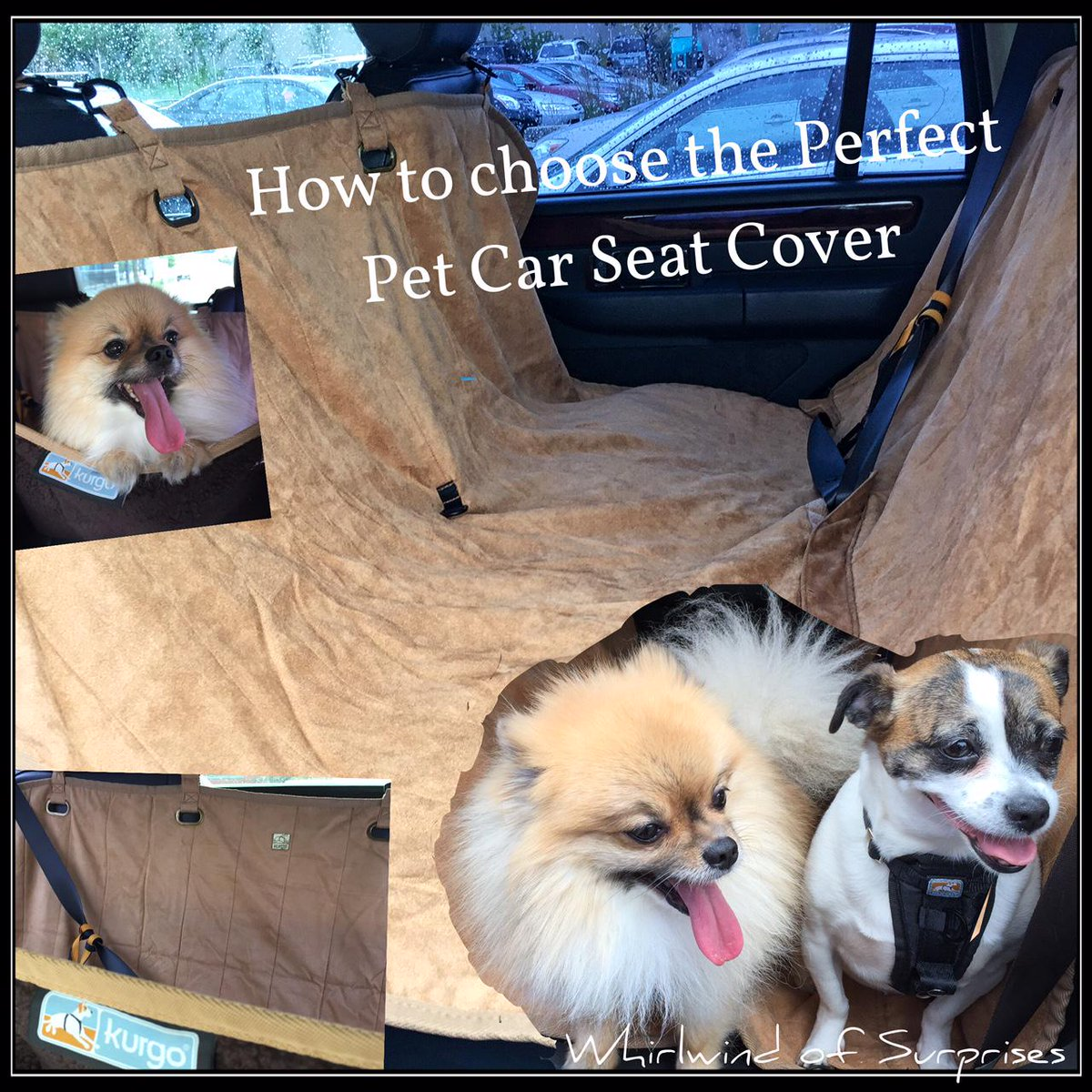 Tips for choosing a car seat cover for dogs