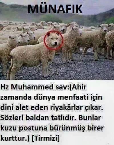 Zahit Edremit On Twitter Saglik Bakanligindaki Sofi Geçinen