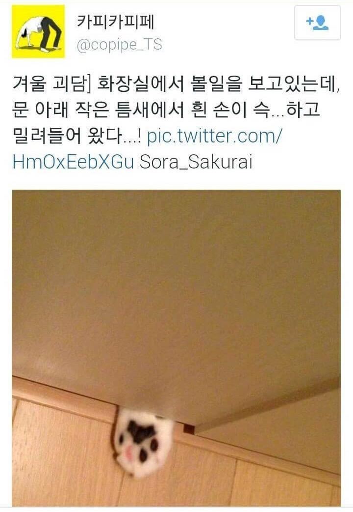 """파리채로 ㅋㅋRT@gimseung: 공포의 화장실 http://t.co/9cQcB3LNdm"""""""