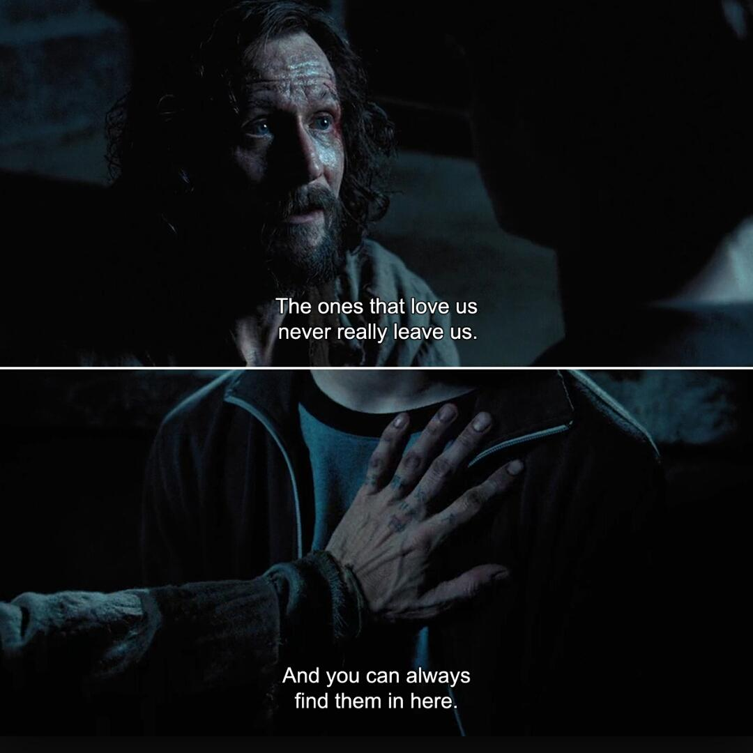 """Harry Potter Facts on Twitter: """"The ones that love us, never"""