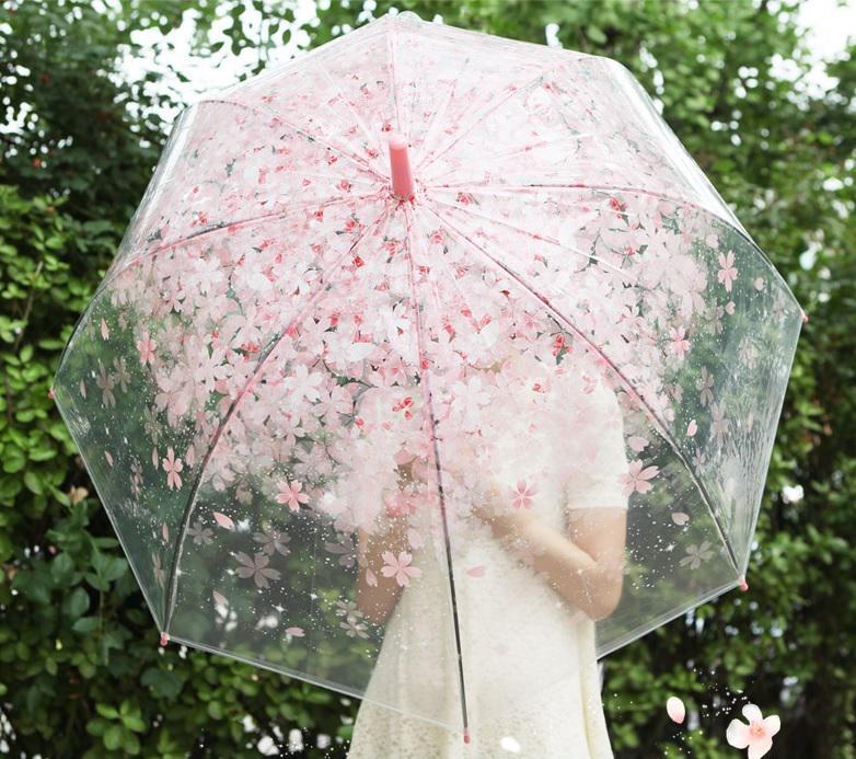 [7/16 하루특가] 비오는 날을 설레게 만들어 주는 #벚꽃우산 이 오늘 단 하루만! 1+1 에 9,900원! 구매링크> http://t.co/ckmFI67NzE  #1300K #청순열매 http://t.co/9R3PVT0D4b