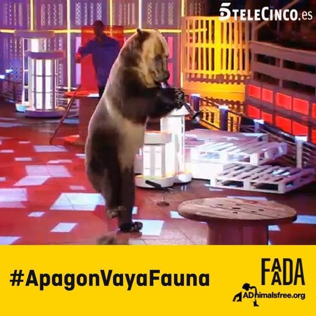 ESTA NOCHE #ApagonVayaFauna  SI A LA DIGNIDAD ANIMAL, NO AL MALTRATO!! DIFUNDID! http://t.co/hsWFfsdLRP