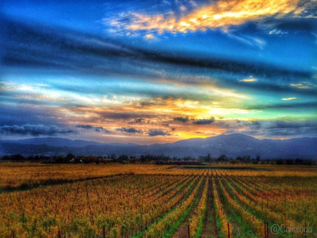 A Weekend in California Wine Country Day One  By: http://t.co/EGO8fA8bW7  #wine #winetasting #napa @nvwineandcigar http://t.co/dNz0xBDot4