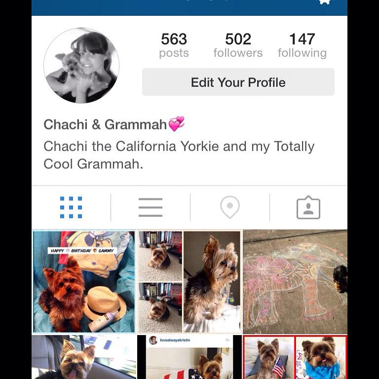 The difference between me and my dog. 473 followers. #followers