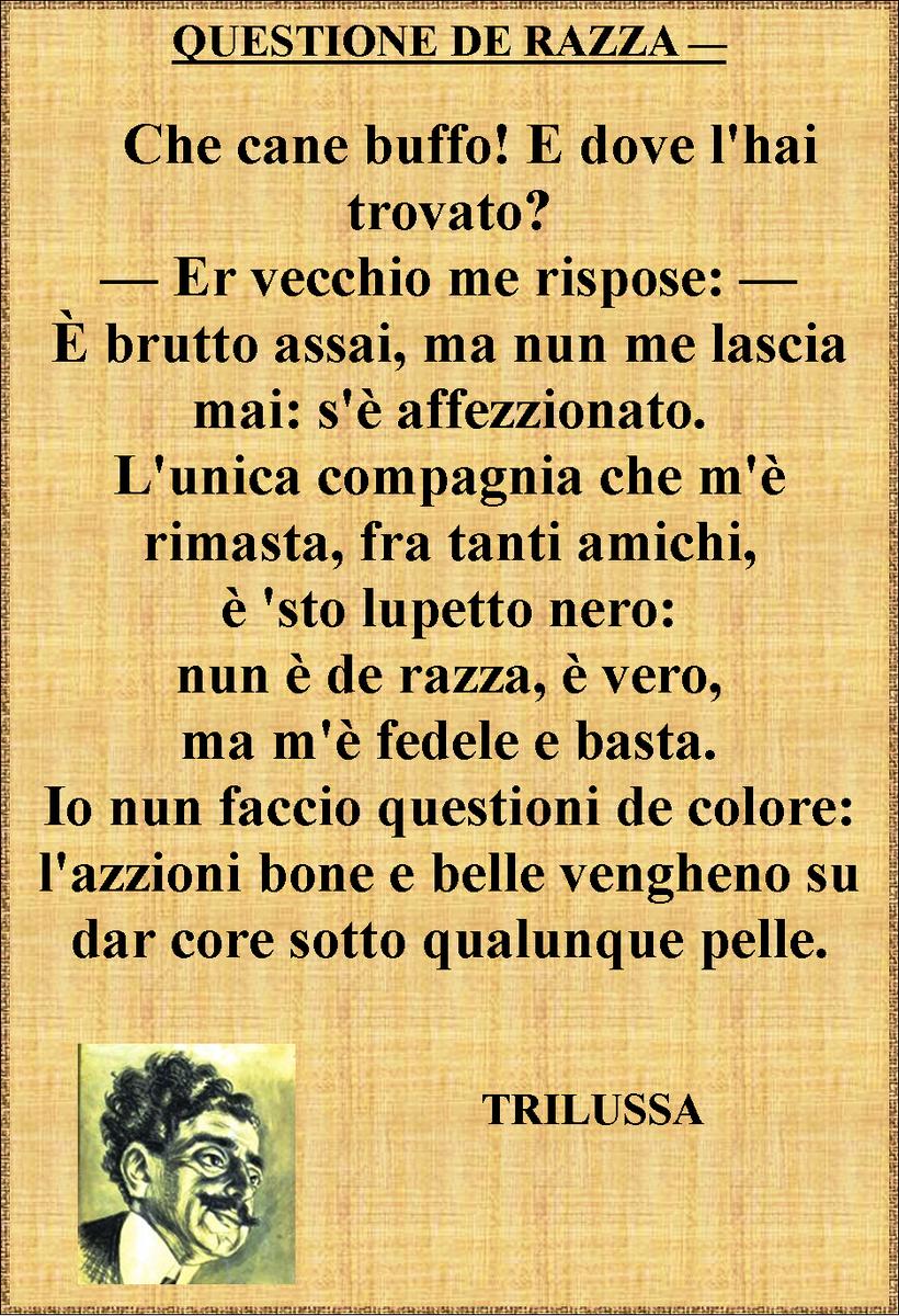 viviana bartolacci (@53_viviana) | Twitter