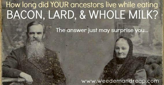 How Long did YOUR Ancestors Live While Eating BACON, LARD, & WHOLE MILK? http://t.co/hEzalj6MJl #TraditionalFoods http://t.co/dTUJ8hbn4I