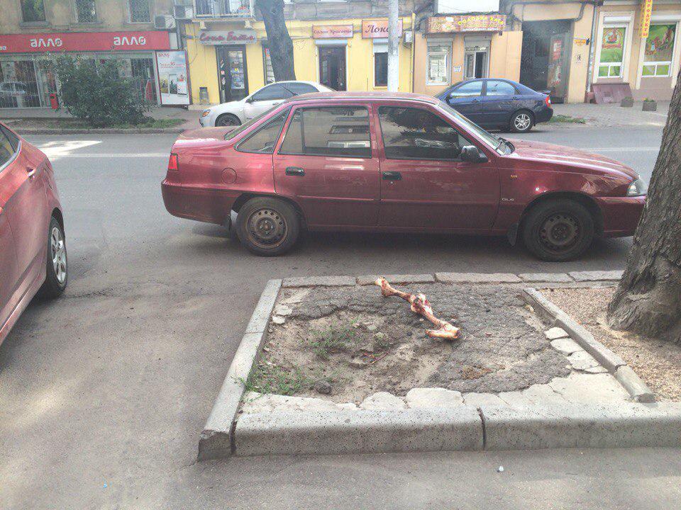 За прошедшие два с половиной месяца ситуация на востоке Украины ухудшилась, - ОБСЕ - Цензор.НЕТ 327