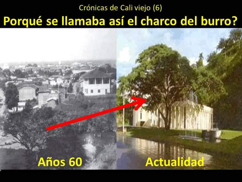 Image result for Charco del Burro Cali