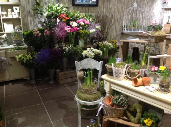 Leaf designs leafdesignsni twitter for Flower shop design layouts