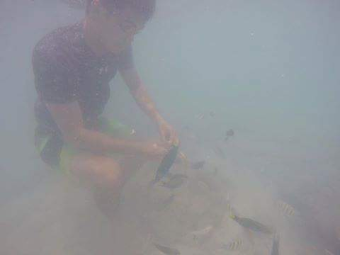 Snorkling and feeding fishes inspite of big waves.  #virginislandcebu http://t.co/Suyinm8UzL