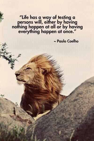 #Fact this is! By @PauloCoelho http://t.co/GywPO6DtWd