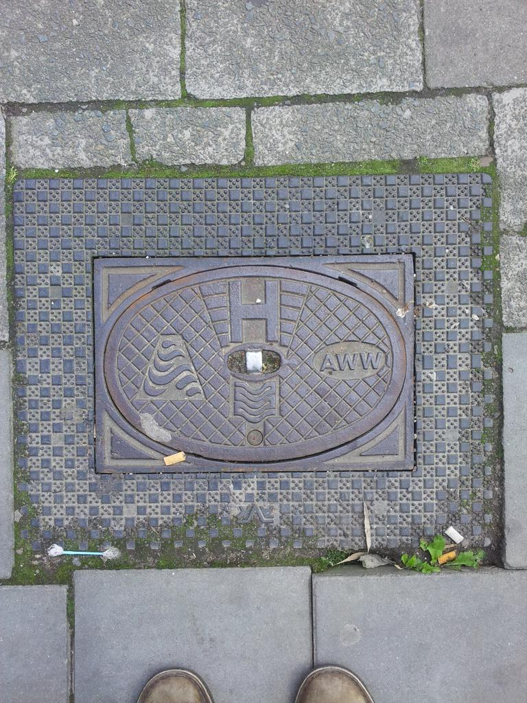 Antwerp's water seals either continually disappointed or viewing something precious #ipra2015 http://t.co/NCptwU5JSo