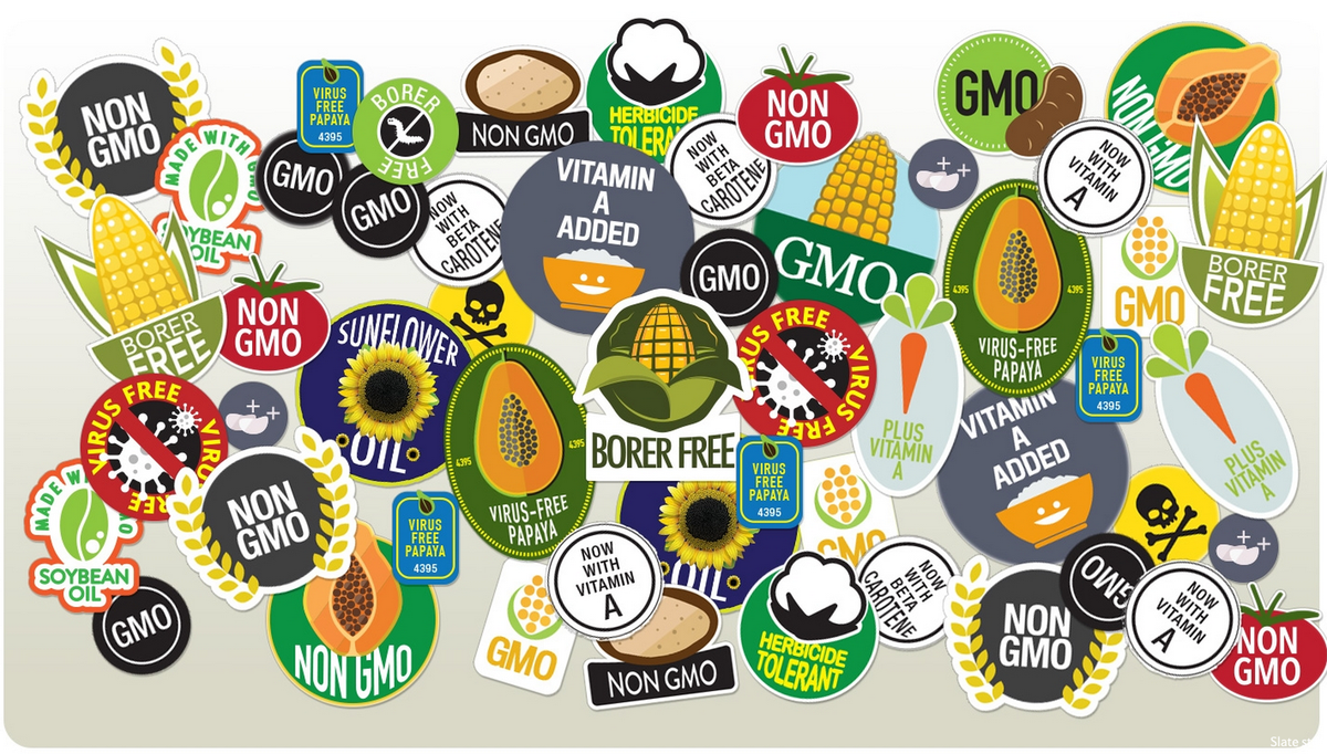 A very thorough takedown of the anti-GMO movement from @slate. http://t.co/lmHB5cJqjc http://t.co/FHXWeORLSL