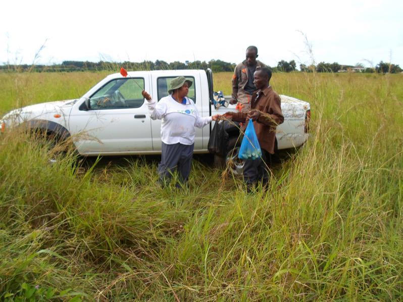 Field Research in Tanzania #IamaScienceDiplomat http://t.co/meVfVkMcgg