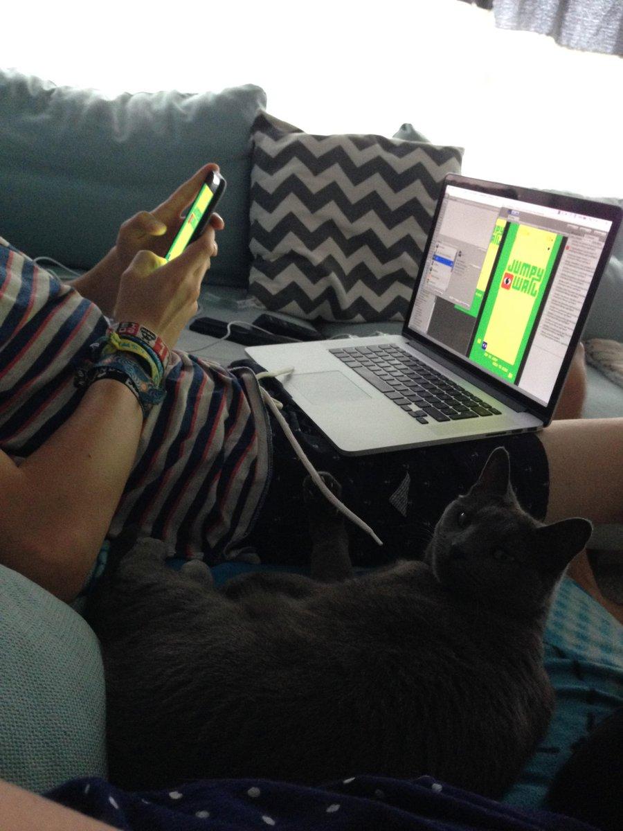 Bae caught me #gamedev'ing #catdrivendevelopment #getjumpy http://t.co/pt2x6Ortiq