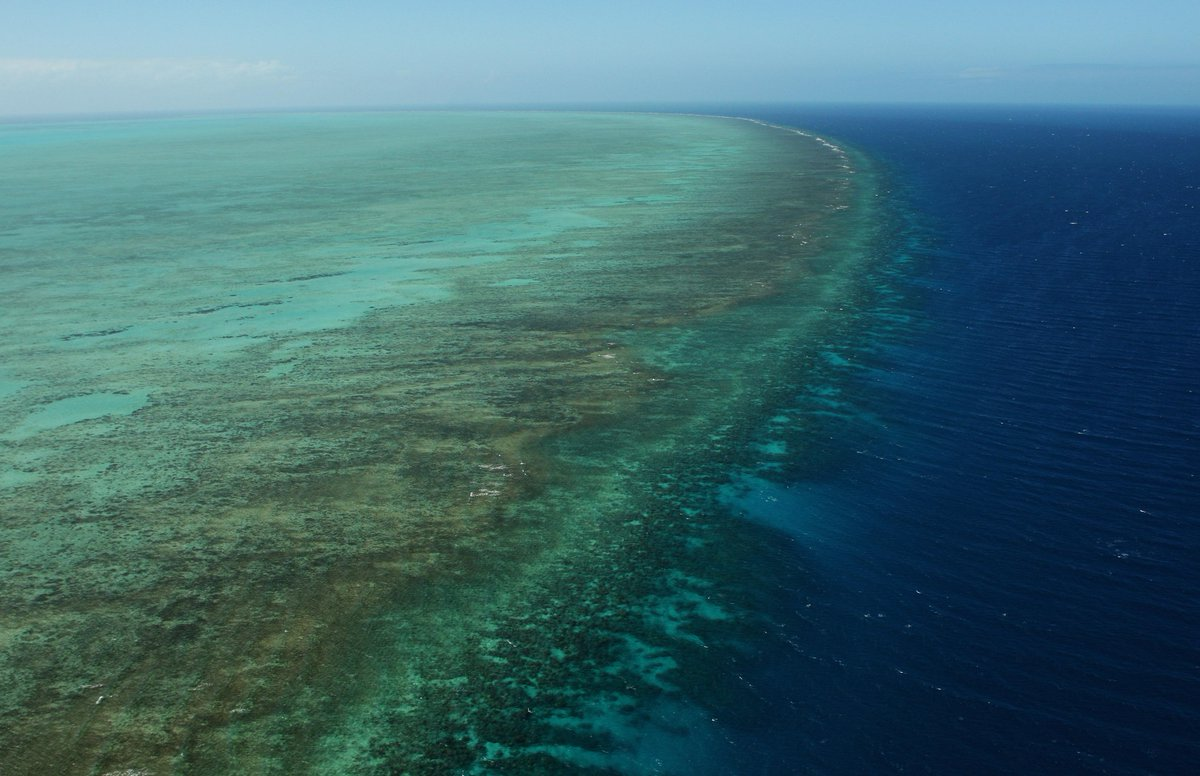 #BREAKING: Large oil spill in north QLD, off GBR, estimated at 10km long, being investigated http://t.co/SvI8HrMzQE http://t.co/gfu3qhrI0G