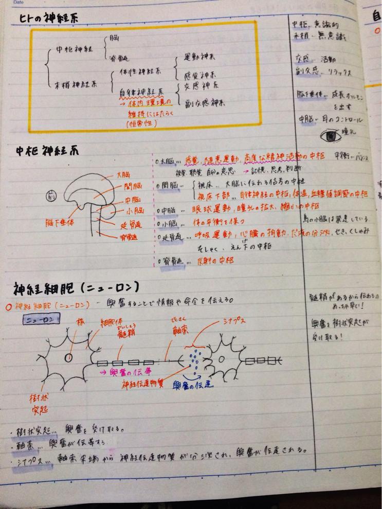 Clear-勉強ノートまとめアプリ公...