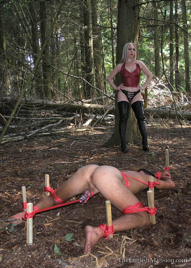Bondage in the woods