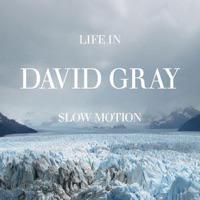david gray life in slow