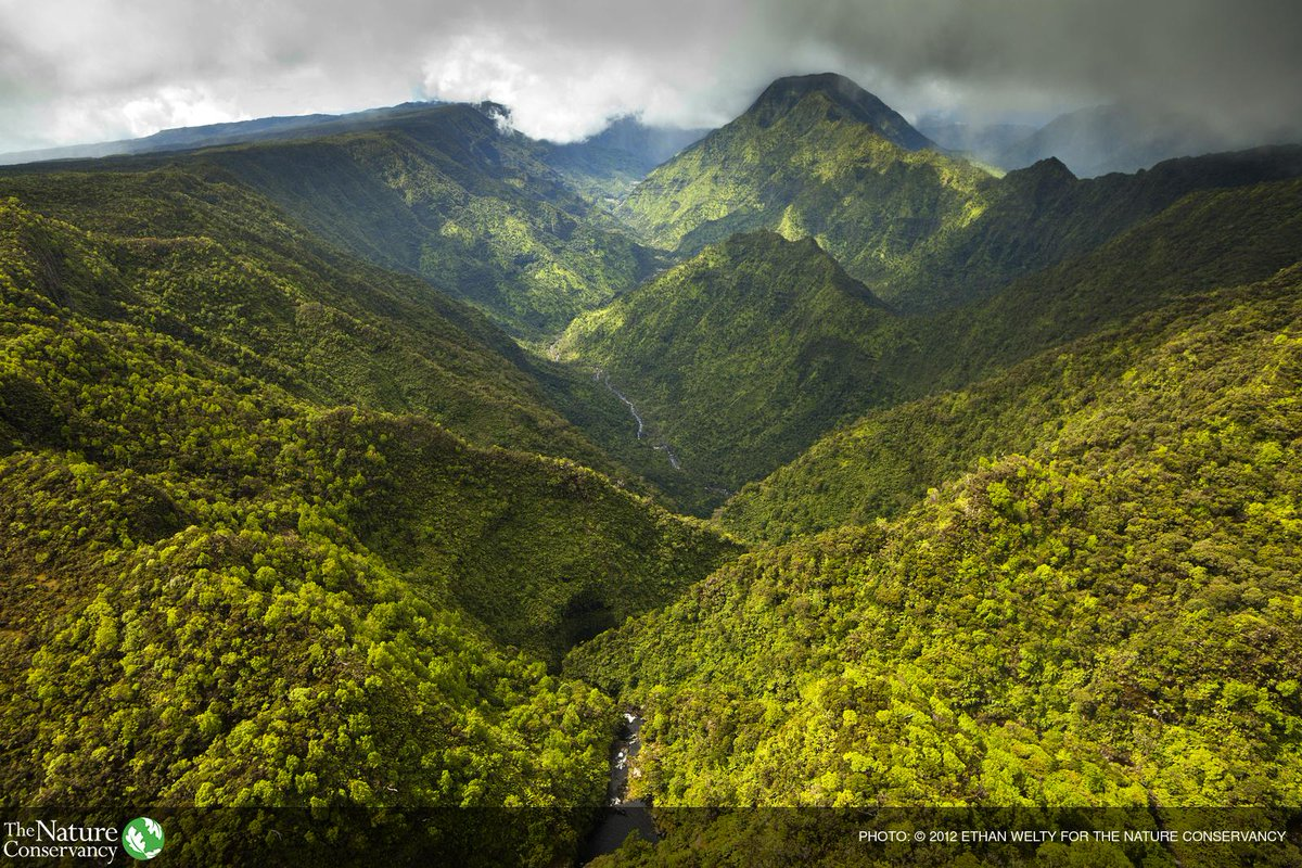 The Nature Conservancy On Twitter Look Deep Into Nature And Then