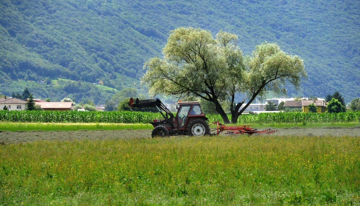 Tragedia familiare: bimbo muore travolto dal trattore del padre