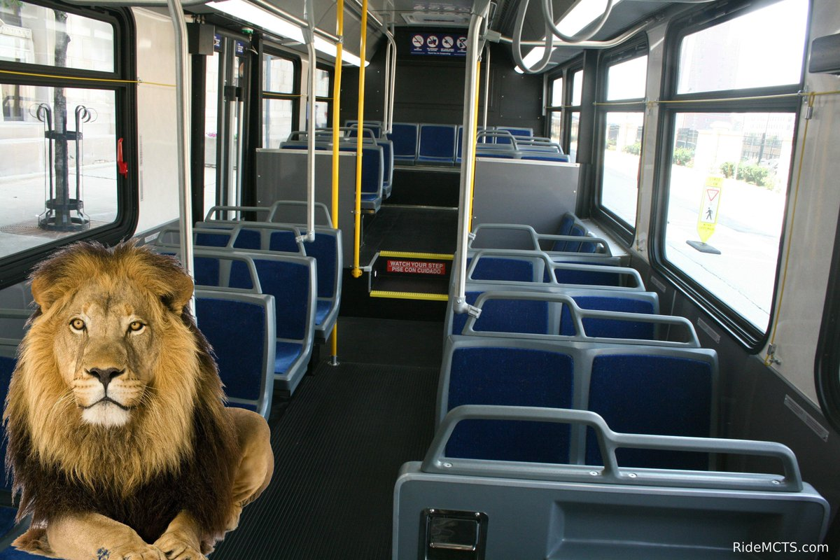 We think we may have seen the #MkeLion on one of our routes today. http://t.co/1XZYLKkJbK
