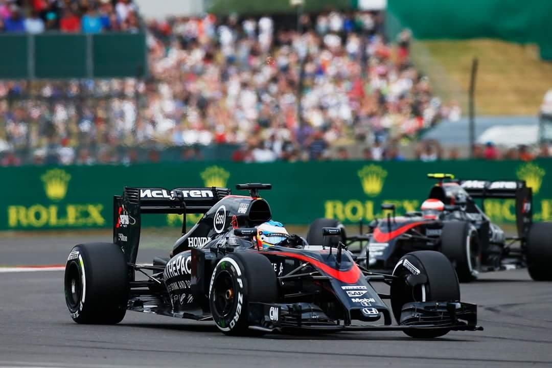 Fernando Alonso - McLaren Honda #14 2015...