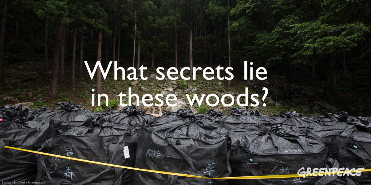 These forests are radioactive. So why is the Japanese gov't forcing people to return? http://t.co/acW7Z3AuyL http://t.co/mcR9FGqxxo