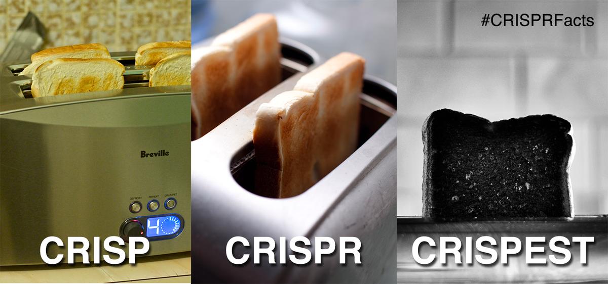 #CRISPRfacts - & head-nod to @BabyAttachMode http://t.co/SxTUvzVJz2