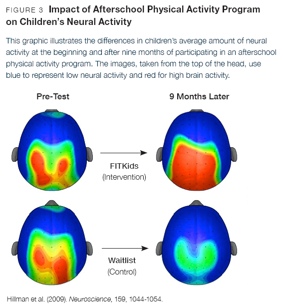 relations of physical activity and brain development Unlike most editing & proofreading services, we edit for everything: grammar, spelling, punctuation, idea flow, sentence structure, & more get started now.
