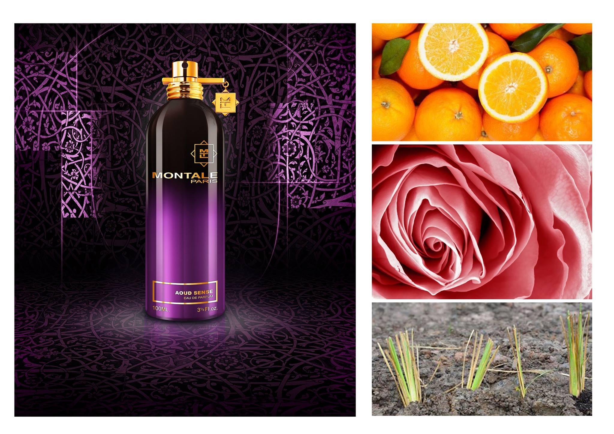 "MONTALE PARFUMS on Twitter: ""#SOTD AOUD SENSE #Montale #Perfume #unisex  #fragrance http://t.co/YLvKhs0yFq http://t.co/wSGai8u2sk"""
