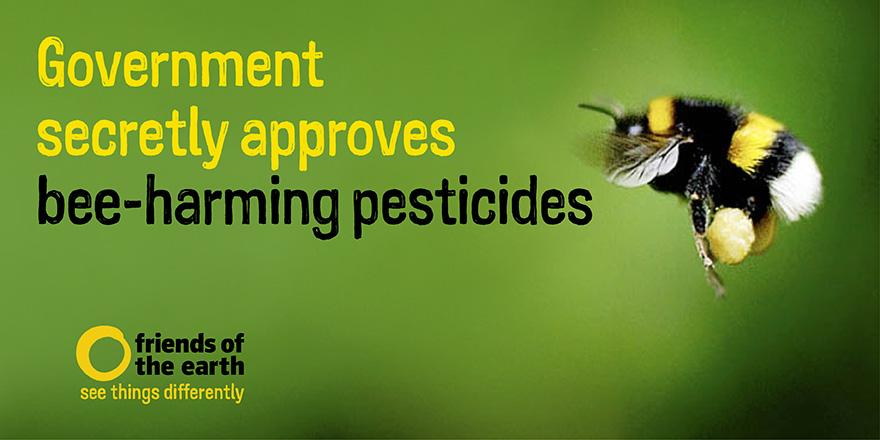#Bees - Govt allows farmers to use 'banned' pesticides - our press release https://t.co/WlqSnytpP0 #savebees http://t.co/LVElm9oLIm