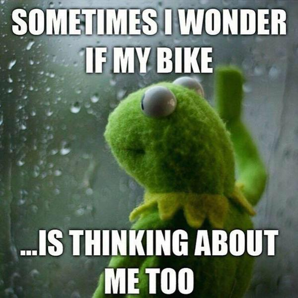 Image result for does my bike miss me too
