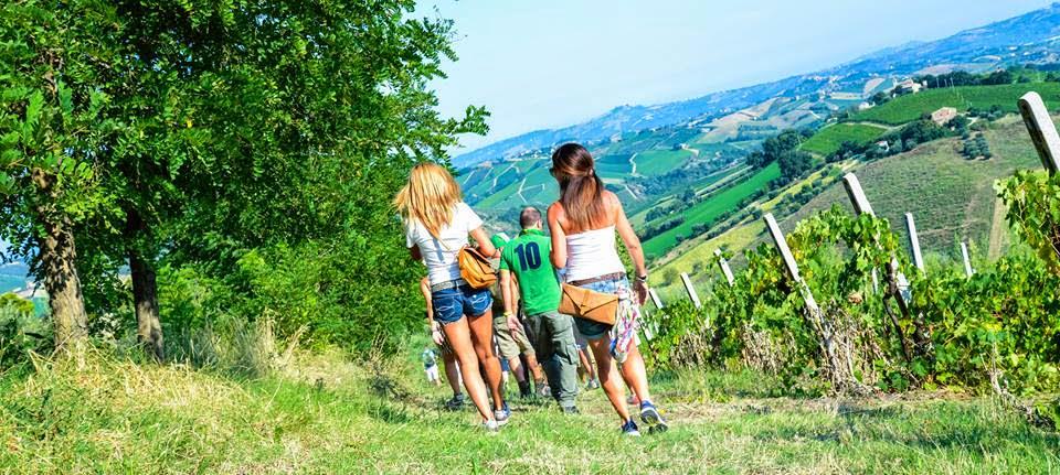"""Vini e piatti tradizionali alla """"Mangialonga"""" di La Morra, grazioso centro in provincia di Cuneo"""