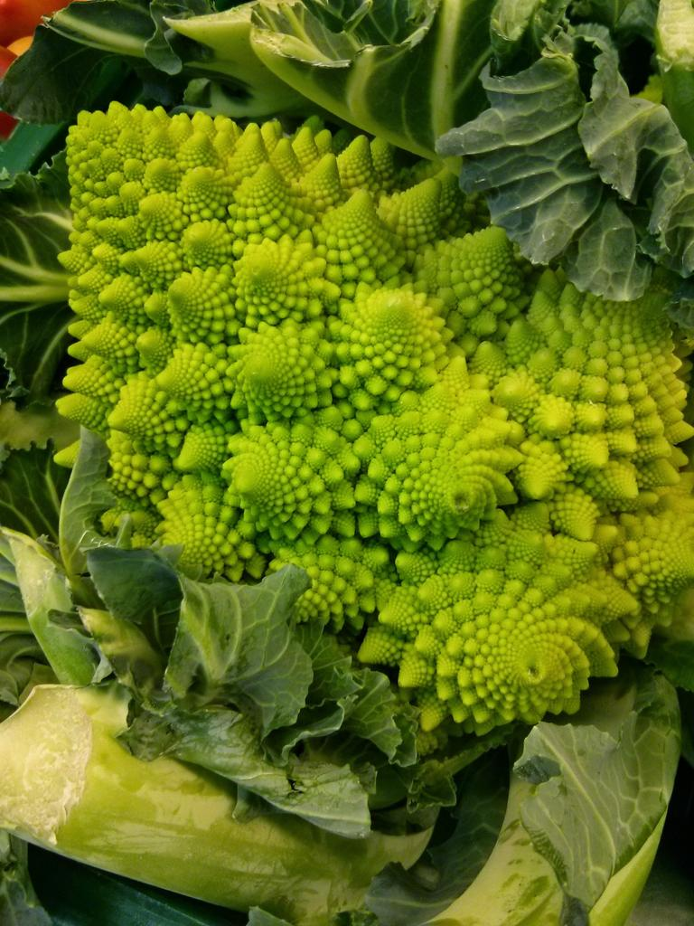 A #unit of romanesco broccoli made of #units of romanesco broccoli made of #units of... #mathphoto15 http://t.co/x4lirFjbHQ