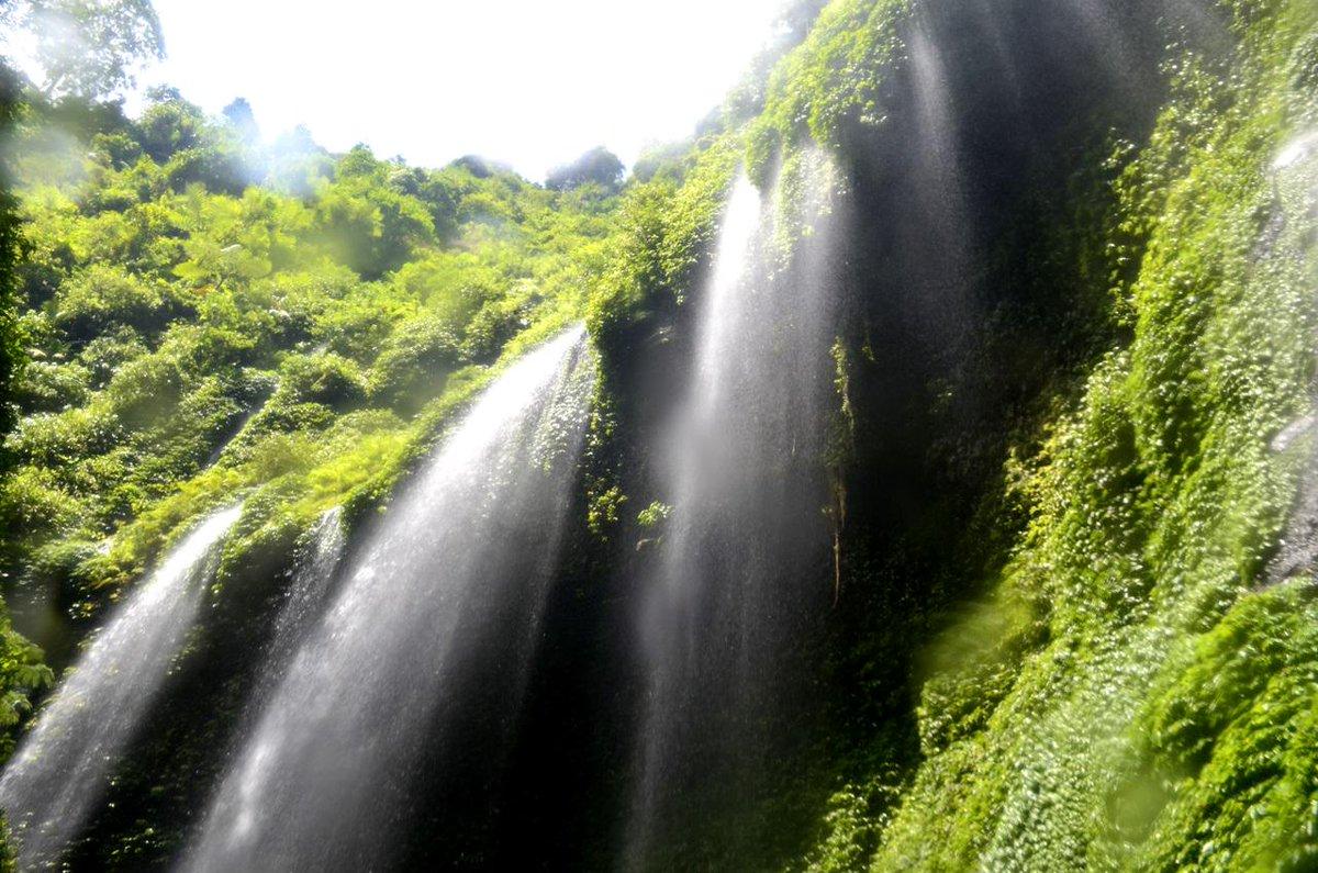 Air Terjun Madakaripura - AnekaNews.net