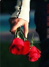 الورود الحمراء CKlzW48VAAAlVKf