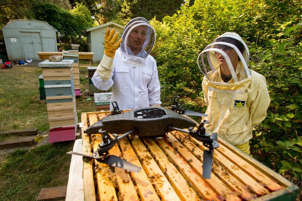 microsoft stories and news on twitter   u0026quot  u0026 39 beekeeper