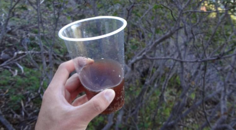 @F4str 私より年上のコーラを飲むことになるとは思いませんでした笑。意外と平気かもしれませんよ! バブル時代のタイムカプセルだけに、ちゃんと泡も立っていました笑。 http://t.co/MDtUxSaw4w