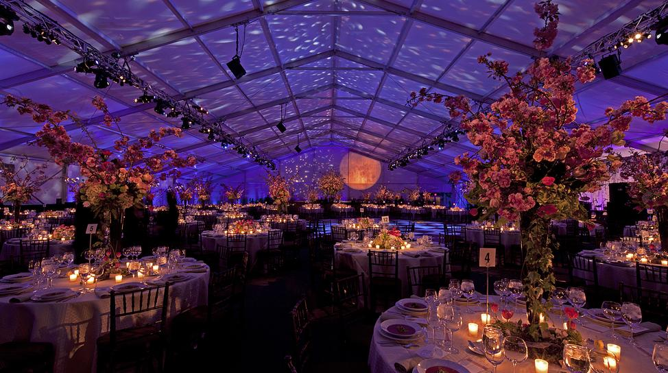 The gorgeous lighting by @bentleymeeker brought a starry night inside the #tent for this 2012 #corporateevent! http://t.co/b96TuzqlIZ