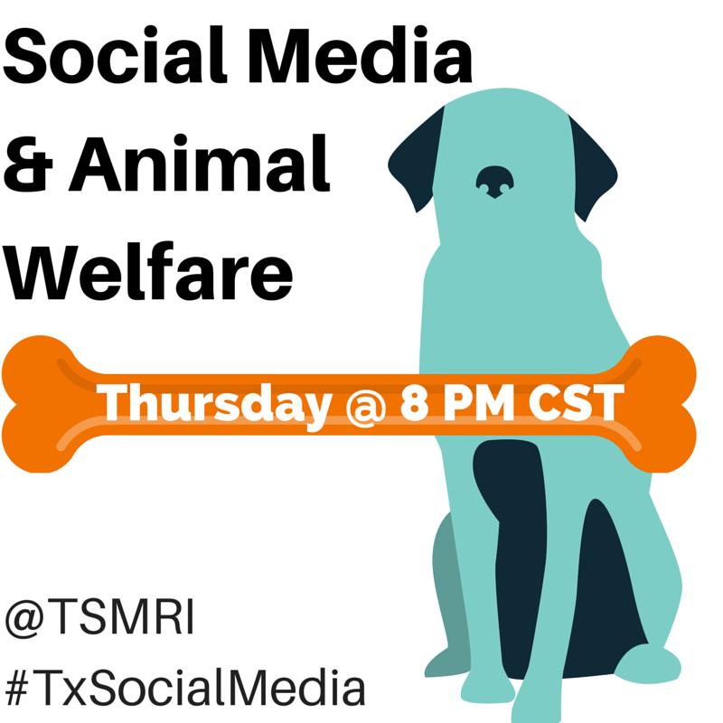 Thumbnail for Amimal welfare + #socialmedia