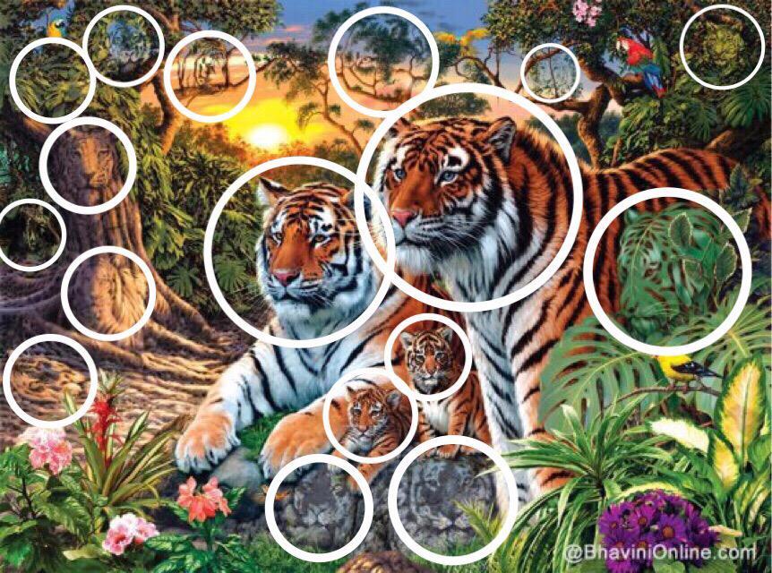 ناهده فوزي على تويتر Haat2014 صحيح ولكن السؤال يقول كم عدد النمور وليس كم عدد النمور الحية