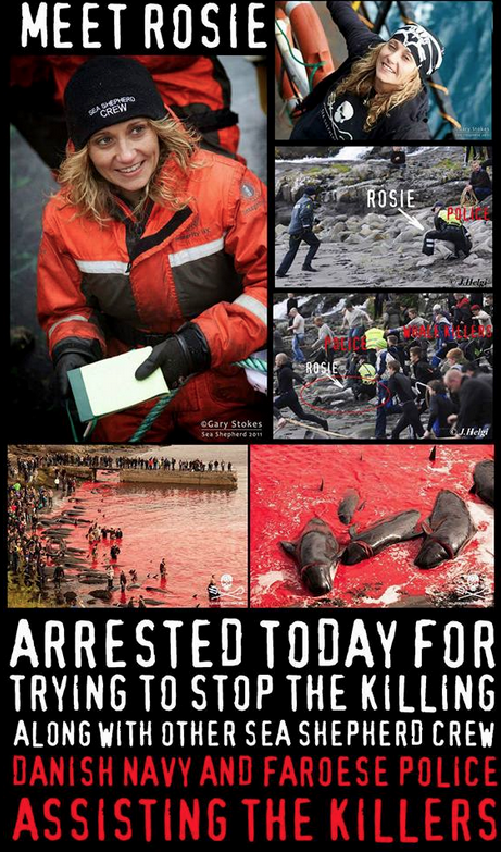 This brave woman. Thank you @RosieKunneke I worry for you. Arrested in #FaroeIslands defending whales from slaughter. http://t.co/Cf1VLAPfhD
