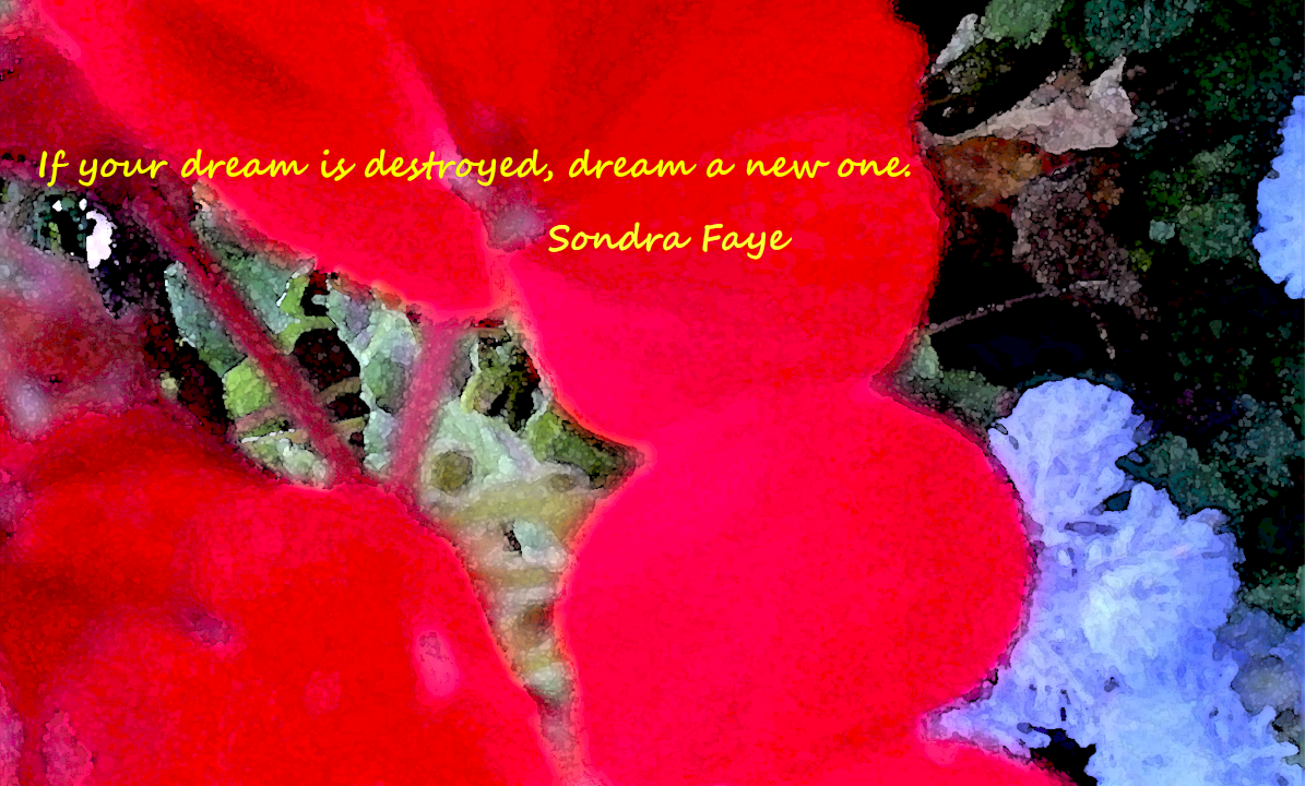If your dream is destroyed, dream a new one. Sondra Faye #quotes http://t.co/Uchvy9zh9c