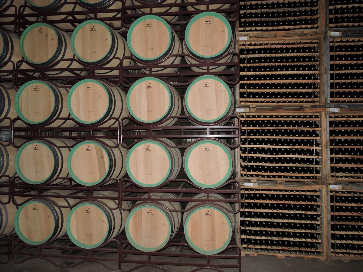 1 Barrica = 300 Botellas. Nave de crianza, Bodegas Olarra, Logroño, La Rioja #mathphoto15 #unidades #units #unités http://t.co/jzhJRqcXZq
