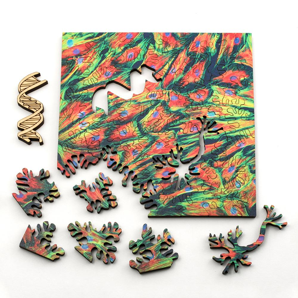 Turn Puzzles Into Pictures Our New Lasercut Puzzles Turn